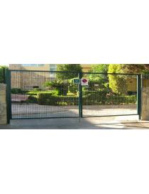 Puerta dos hojas verde